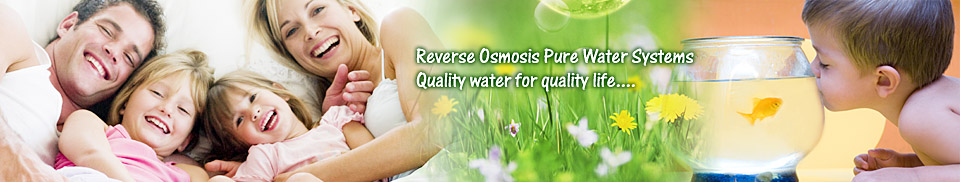 Purepro 174 Reverse Osmosis Water Filter Systems History
